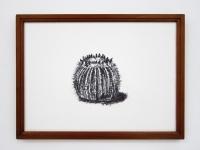 31_cactus-houtskool-inlijst-800.jpg
